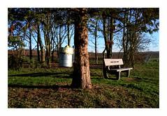 Absurdity | Absurditt (rainbowcave) Tags: tree grass bench garbage bank sunny bin trunk gras garbagecan trashcan sonnig mlleimer baum baumstamm