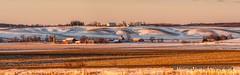 Iowa winter early morning light (Thomas DeHoff) Tags: morning winter light sony iowa farmstead a700