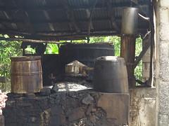 IMG_7946 (alexandre.vingtier) Tags: haiti cap rum nord rhum haitien clairin