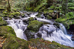 Ravennaschlucht (MSPhotography-Art) Tags: nature creek germany landscape deutschland waterfall wasserfall outdoor natur landschaft schwarzwald blackforest wandern wanderung badenwrttemberg