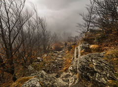In the middle of  the cloud (Alessandro Iaquinta) Tags: winter friends orange mountain cold photoshop canon lens landscape photography eos reflex exposure sunday adventure 5d dslr montagna paesaggio onthetop picoftheday 14mm samyang pesaggio pesaggi 5dmarkiii