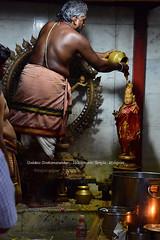Nataraja - Kalasandhi Abishekam. (Kapaliadiyar) Tags: nataraja lordnataraja kapaliadiyar velleeswarartemplemylapore velleeswarartemple natarajarabishekam natarajadarisanam
