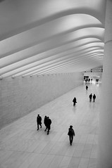 West Concourse (Takhte-Sarah) Tags: newyorkcity blackandwhite newyork architecture path manhattan worldtradecenter oculus santiagocalatrava freedomtower newyorkarchitecture 1worldtradecenter