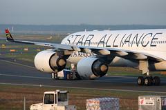 Star Alliance (South African Airways) Airbus A340-642 ZS-SNC (Kambui) Tags: airplane southafrica airplanes planes airbus sdafrika frankfurtammain a340 aviones avions flugzeuge rheinmain  avies suidafrika eddf aeroplani kambui