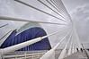 Pont de l'Assut de l'Or a la Ciutat de les Arts i de les Ciències (CAC). València (Abariltur) Tags: valencia spain cac santiagocalatrava castellón ciutatdelesartsidelesciències nikond90 pontdelassutdelor afsdxnikkor1024mmf3545ged abariltur lágora