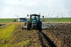 Wieringen (lubberdink-fotografie.nl) Tags: boer vogels natuur gras huis lucht dijk ploegen voor meeuwen friesland kust trekker wieringen akker akkerbouw