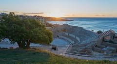 Amfiteatre de Tarragona (Escipió) Tags: sunrise none amphitheatre tarragona amfiteatre