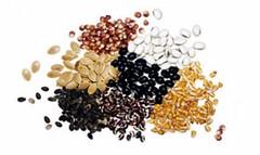 بذر چمن پنج تخم رویال (iranpros) Tags: تخم چمن پنج بذر رویال بذرچمنپنجتخمرویال