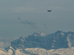 Swiss International Air Lines, Airbus