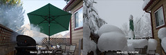 March 23- Denver blizzard (astudyincanon7d) Tags: colorado snowstorm denver blizzard snowday winterweather broomfield march23 2016