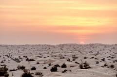 Sunset in the desert. (Jordi Corbilla Photography) Tags: sunset silhouette nikon dubai desert dunes d7000 sunporn burjkhalifa jordicorbilla jordicorbillaphotography