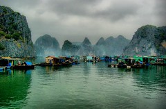 Floating fishing village, Halong Bay, Vietnam (Alex Thetford) Tags: travel sea people alex landscape asia fishermen places structure worldheritagesite vietnam subject halongbay thetford floatingvillage phototype gulfoftonkin colourphotograph limestoneislets