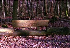 Welcome sign (ercastrob) Tags: sign forest woods welcome nikonfa oberursel canoscan8800f eichwldchen agfavistaplus400