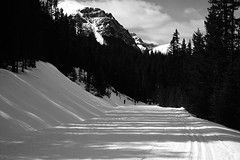 DSC_0903 (Andrew Paterson) Tags: road lake alberta lakelouise moraine