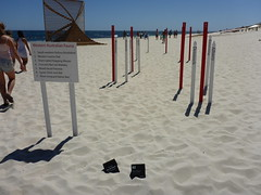 The Red List (Extinct) - Rebecca Westlund (Figgles1) Tags: red sea sculpture list cottesloe sculpturebythesea sculptures extinct 2016 p1010846 theredlistextinct rebeccawestlund