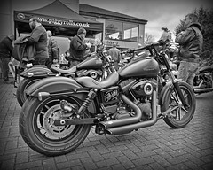 Flo-Rider.. (Harleynik Rides Again.) Tags: monochrome special harleydavidson biker streetbob harleynikridesagain