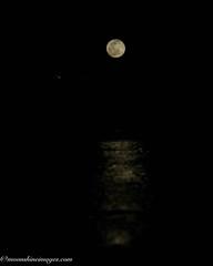 DSC07621-Edit.jpg (rdking647) Tags: ocean gulfofmexico night fullmoon moonrise