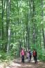A walk in the woods (oclipa) Tags: elvira arina oana