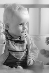 Arthur tiens assis tout seul comme un grand... (Photos.dan2010 Merci.Thanks pour vos 1.M. Visites) Tags: portrait arthur enfant fujixt1 xf56mmf12rapd