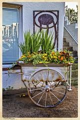Flower Cart (Kool Cats Photography over 7 Million Views) Tags: flowers art oklahoma colors flora artistic paseo cart hdr oklahomacity ef24105mmf4lisusm canoneos6d