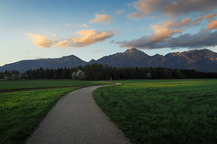 Spring story I (Dejan Hudoletnjak) Tags: road sunset nature fairytale landscape spring warm natural path magic bio story land eco tale
