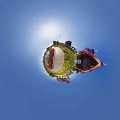Dubai Miracle Garden @ 360 (jeglikerikkefisk) Tags: panorama dubai uae 360 sphericalpanorama vae kugelpanorama littleplanet sphrischespanorama dubaimiraclegarden