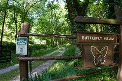 Butterfly Hollow (Karen Alisa) Tags: green getaway country scenic couples historic retreat bb