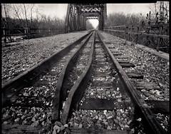 Tracks: WPPD 2016 (Joe Iannandrea) Tags: railroad bridge blackandwhite ontario canada landscape niagarafalls tracks railway ishootfilm 8x10 largeformat pinholephotography contactprint wppd filmphotography diycamera xrayfilm fujihru caffenoldeltamicro