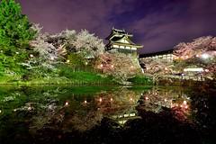 , (Vincent_Ting) Tags: sky reflection castle japan cherry landscape temple spring sunny bluesky cherryblossoms nara kansai cherrytree     japantemple    touristdestination      vincentting
