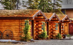 Rental cabins are ready - Alaska (JLS Photography - Alaska) Tags: building alaska architecture cabin outdoor logcabin cabins rentals logcabins jlsphotographyalaska