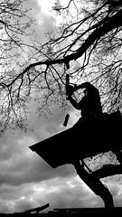 Hochentaster (Lichtabfall) Tags: sky blackandwhite tree monochrome clouds person ast branch branches chainsaw himmel wolken schwarzweiss ste baum kettensge einfarbig motorsge