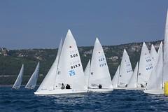 Nordio16_21 (Alberto Lucchi) Tags: club star sailing yacht sail tito regatta trieste regata 2016 coppa nordio adriaco