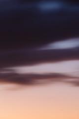 This evening (Griffin Simm) Tags: sunset landscape melbourne softtones 70200mmf28l canon6d