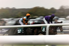 Warwick Races - Horse Racing (rjhavfc82) Tags: horse movement racing warwick