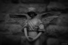 All Our Losses Remembered. Windsor, ON. (Pat86) Tags: blackandwhite angel death memories stjosephs photooftheday rivercanard