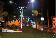 Yavuz Sultan Selim Caddesi Işıklandırma Çalışmaları