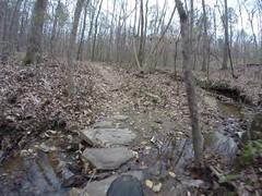 Stream Crossing (The Goat Whisperer) Tags: bridge winter bike river ride fat alabama trail pugs pugsley surly swayback wetumpka coosa fatbike