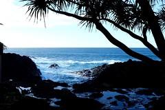 Kauai (pburka) Tags: beach silhouette hawaii rocks waves pacific palm kauai queensbath