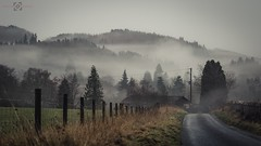 Sleepy Hollow? (Augmented Reality Images (Getty Contributor)) Tags: road trees winter cloud mist cold forest landscape scotland countryside village perthshire hard lane