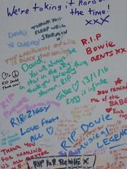 David Bowie mural in Brixton (stillunusual) Tags: uk travel england urban streetart london wall graffiti mural cityscape rip streetphotography wallart urbanart brixton davidbowie urbanlandscape urbanscenery 2016 travelphotography ldn travelphoto urbanwalls londonstreetart travelphotograph morleys tunstallroad londonstreetphotography wallporn graffitiporn morleysdepartmentstore