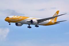9V-OJB | BARRY | Scoot | Boeing 787-9 Dreamliner (jANgsg) Tags: singapore cloudy blueskies scoot changiinternationalairport dreamliner sinwsss boeing7879 9vojb cn37113