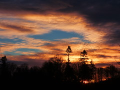 Sunset (Tobymeg) Tags: blue trees sunset sky cloud grey scotland holywood