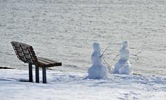 Gesticulating (MTSOfan) Tags: park winter snow water river bench fun snowmen conversation talking