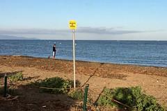 Divieto di pesca.. (Irene Grassi (sun sand & sea)) Tags: sea italy beach water fisherman italia mare toscana acqua spiaggia orbetello pescatore mattina divieto