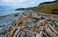 Driftwood (ptalamy) Tags: sea clouds island washington state landing driftwood sound puget whidbey ebeys 500px