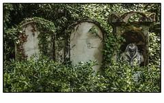 Cimetire du Pre Lachaise (Victoriano Rivero) Tags: viaje verde arquitectura nikon mort cementerio esculturas vert muerte estatuas francia pars lafrance excursin arquitecturapopular paisajesdeciudad nikond90 joselosada cementeriodeprelachaise cementeriosdepars