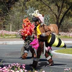 Wildflower Festival, Kings Park, Perth (Allan Rostron) Tags: flowers insects perth fancydress westernaustralia