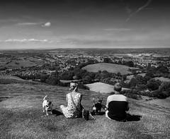 Looking over_Tor Glastonbury (VinTer59) Tags: blackandwhite cane glastonbury tor prato biancoenero inghilterra guardare seduti lookover