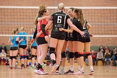 SL8_5284_DxO_filtered (Michael Scharf - MTS Sportfotos) Tags: sport ball volleyball halle damen neubrandenburg scn pampow