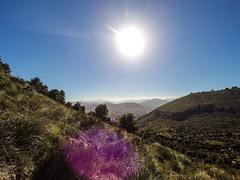 YDXJ1004 (Mancusomancuso) Tags: mountain sicily monte sicilia bagheria escursione catalfano